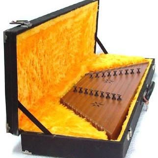 کیف مخصوص نگهداری سنتور